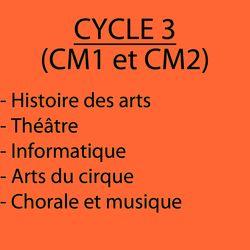 Décloisonnement cycle 3