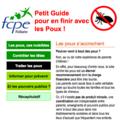 Poux_Blog